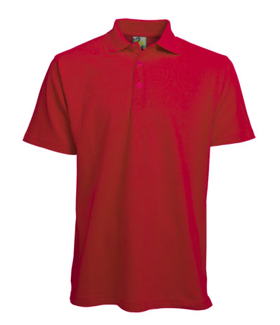 L&S Polo Basic SS for him 1